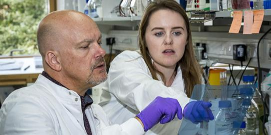 Babraham Institute group leader Dr Simon Cook and PhD student Emma Minihane discuss research results in the lab. Image credit: the Babraham Institute.