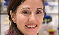 Dr Meri Huch
